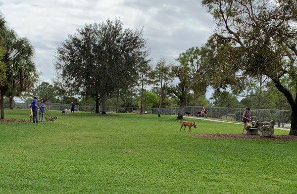 Pooch Pines Dog Park
